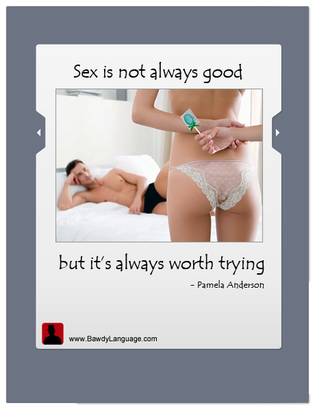 sex bawdy quote by Pamela Anderson